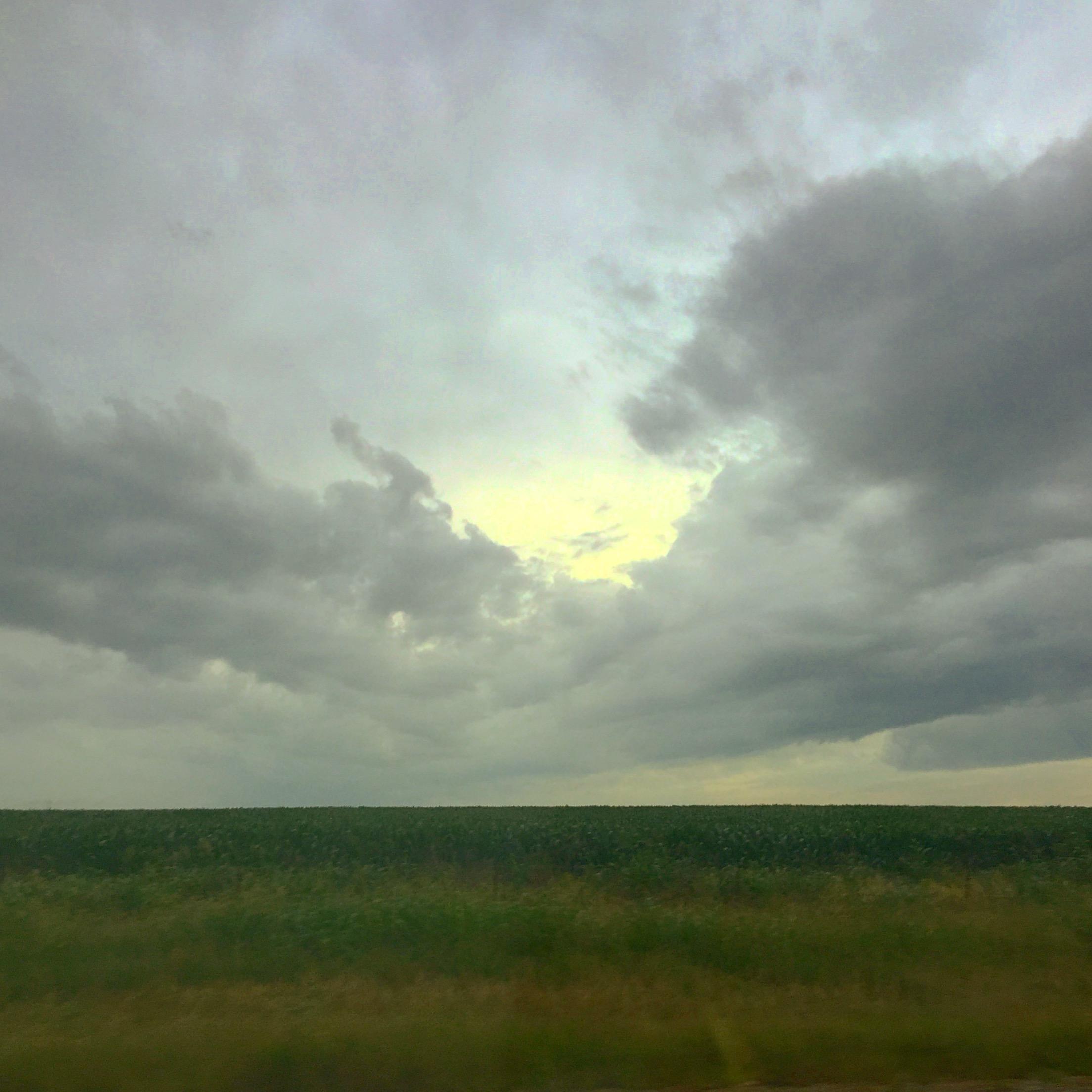 Texan Landscape