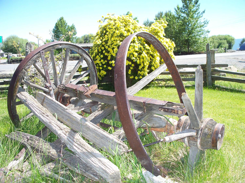 wagon-remains.jpg