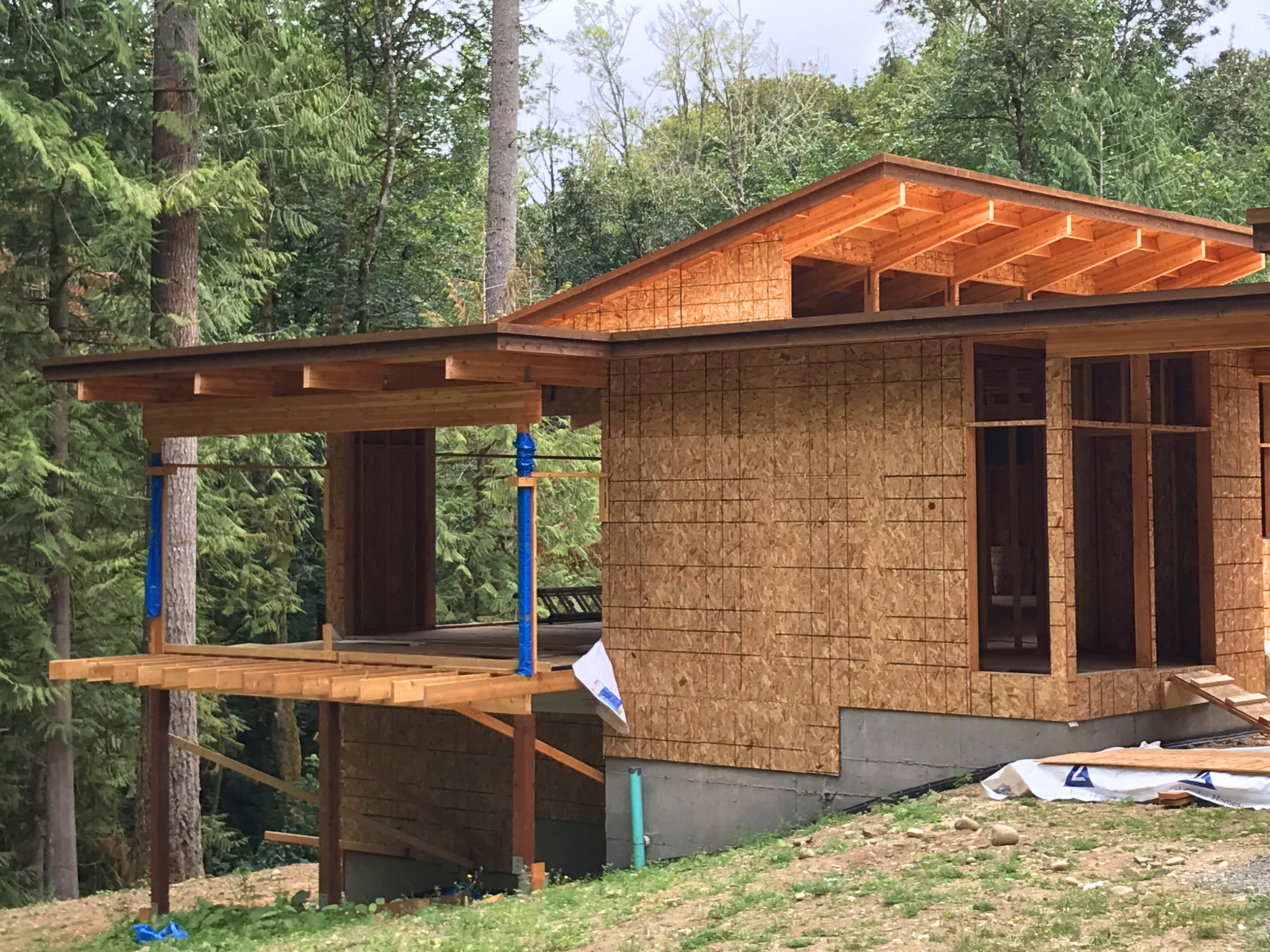 "The post and beam system can support deep floor and roof overhangs, here support the dining room and covered deck that ""float"" up in trees (note the sunlit great room behind)."