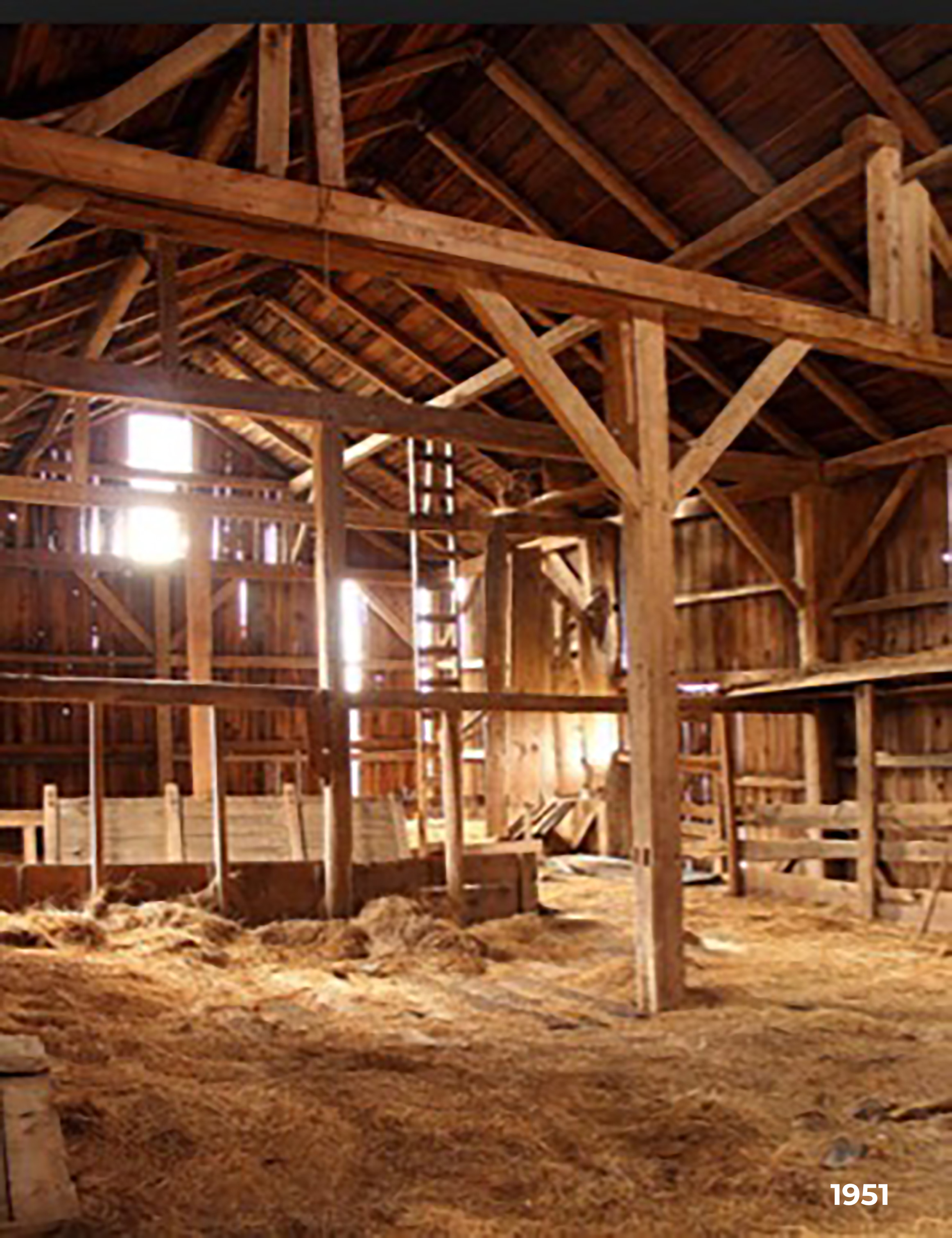blog Barn image 1 copy copy.jpg
