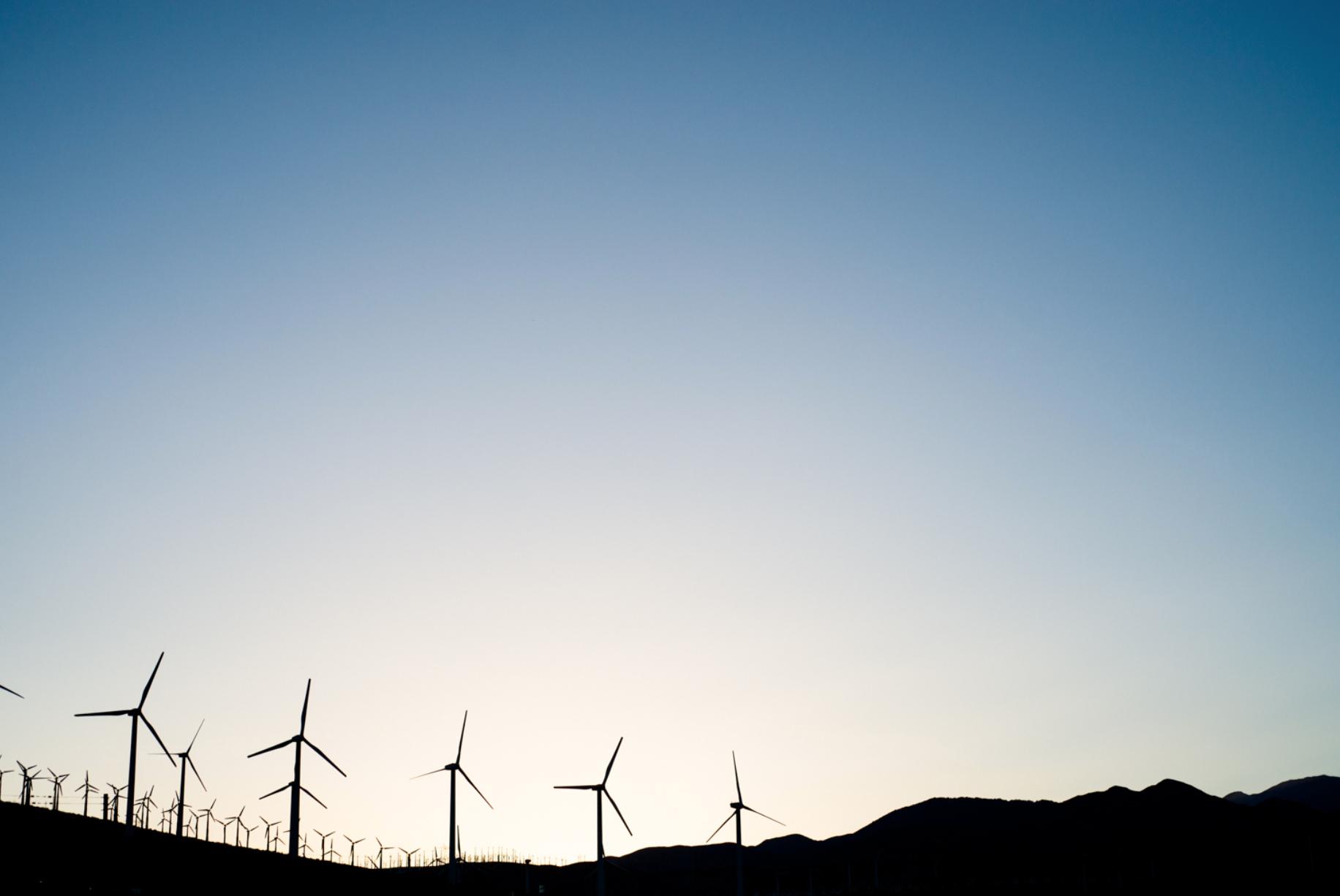Windmills, image credit:  Sarah Dickenson