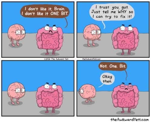 gut brain.png