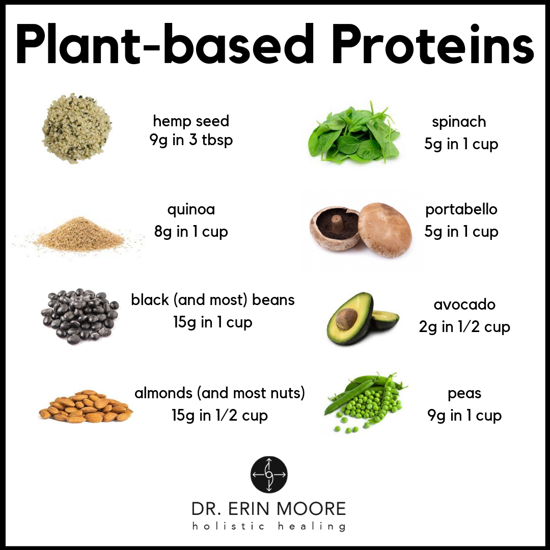 proteins1.png
