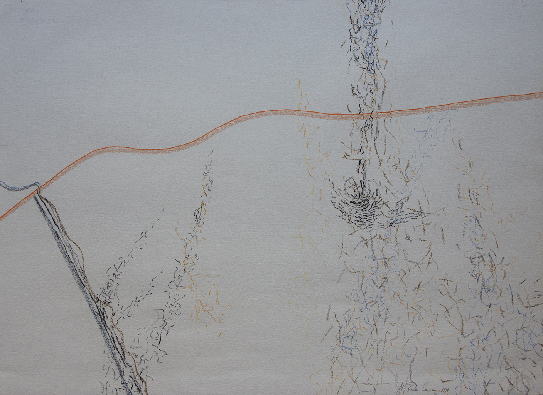 FLYING SOULS/ LÂNGA NOI (1994) PENCIL  AND PASTEL ON PAPER 57 X 77 CM