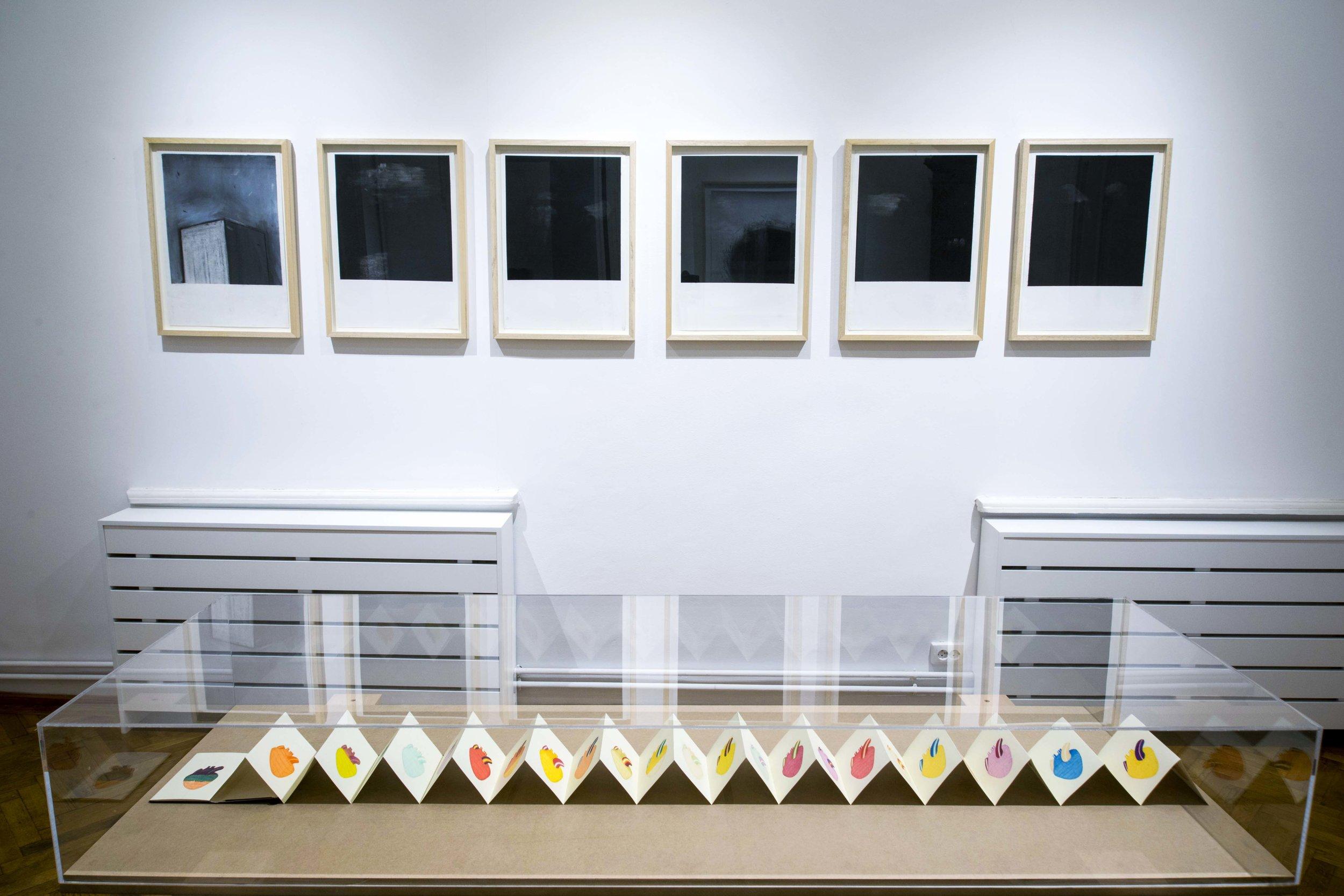 RAZVAN ANTON - FOTO EXPO 17E.jpg