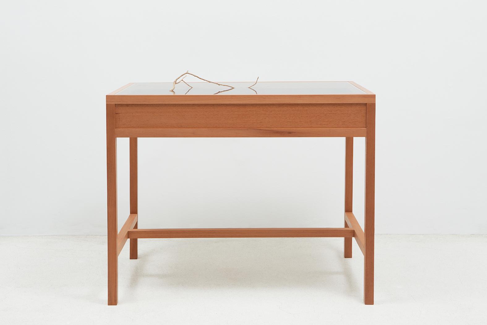 SEM VENTO/ WINDLESS (2013) tree branch and showcase, 90 x 100 x 70 cm