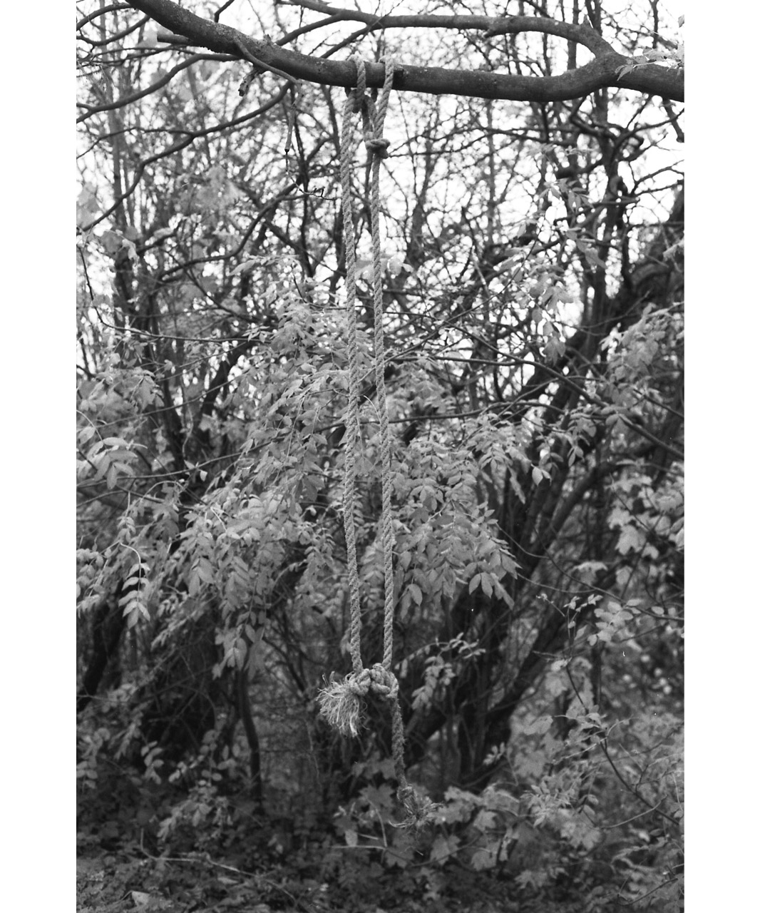 UNTITLED (Rope), (2011) b&w photography, 60 x 50 cm, Edition of 2
