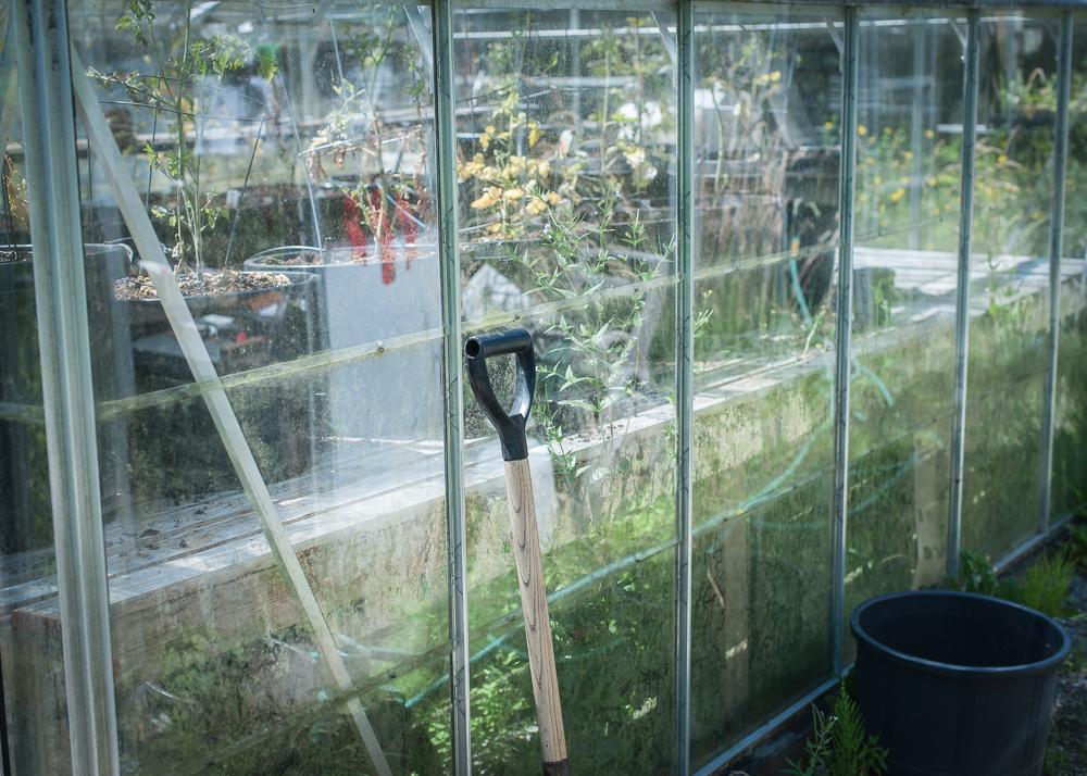 _Garden and Greenhouse_-18.jpg
