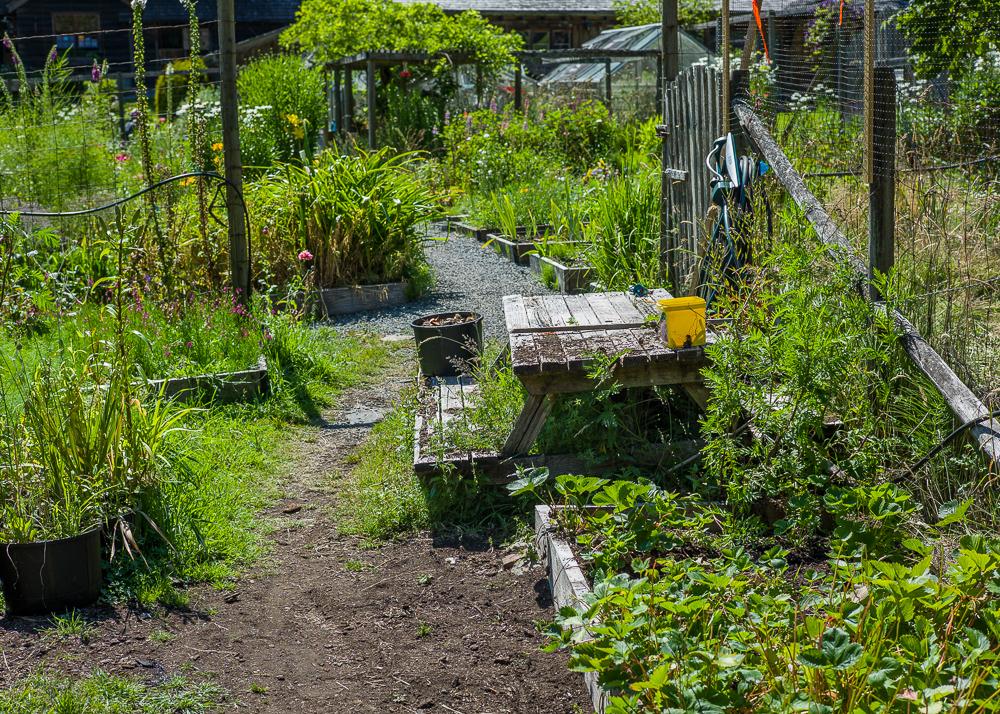 _Garden and Greenhouse_-17.jpg