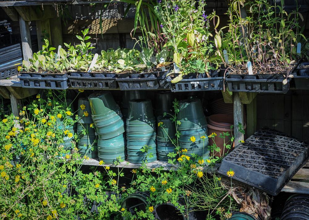 _Garden and Greenhouse_-6.jpg