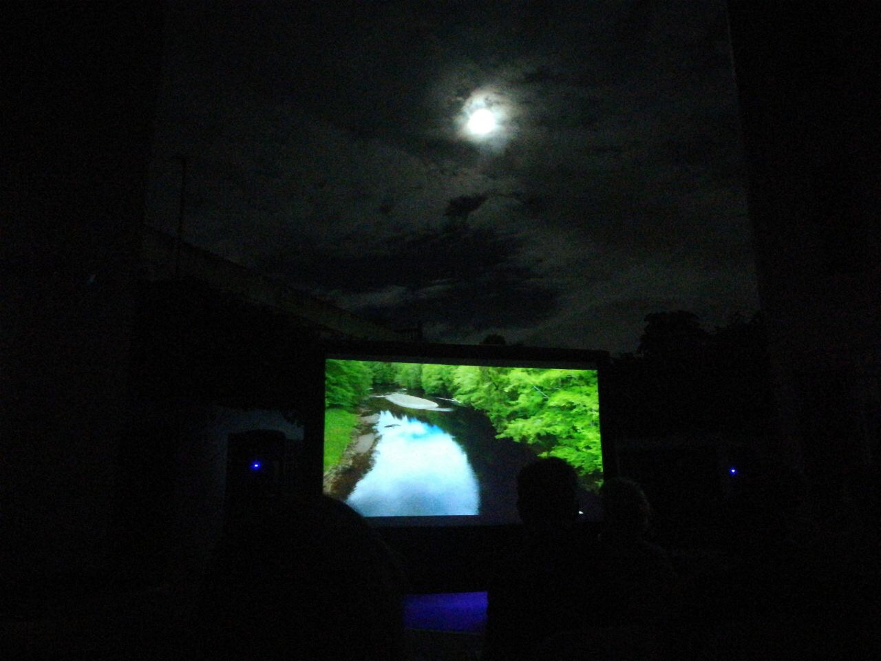 Watching a film about a forest, in a forest.