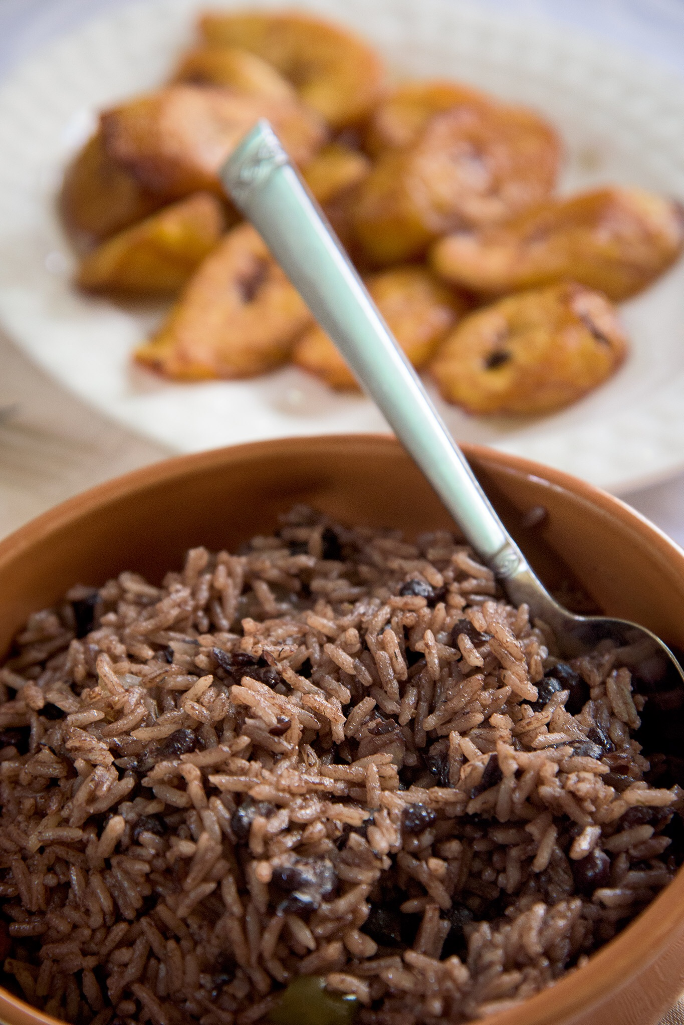 A typical meal served during our visit to Cuba; fried plantains and rice and beans.