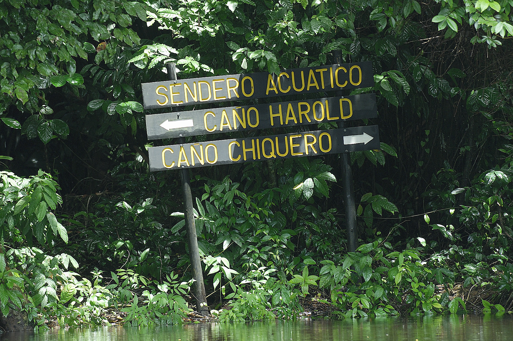 """street"" signs in the canals"