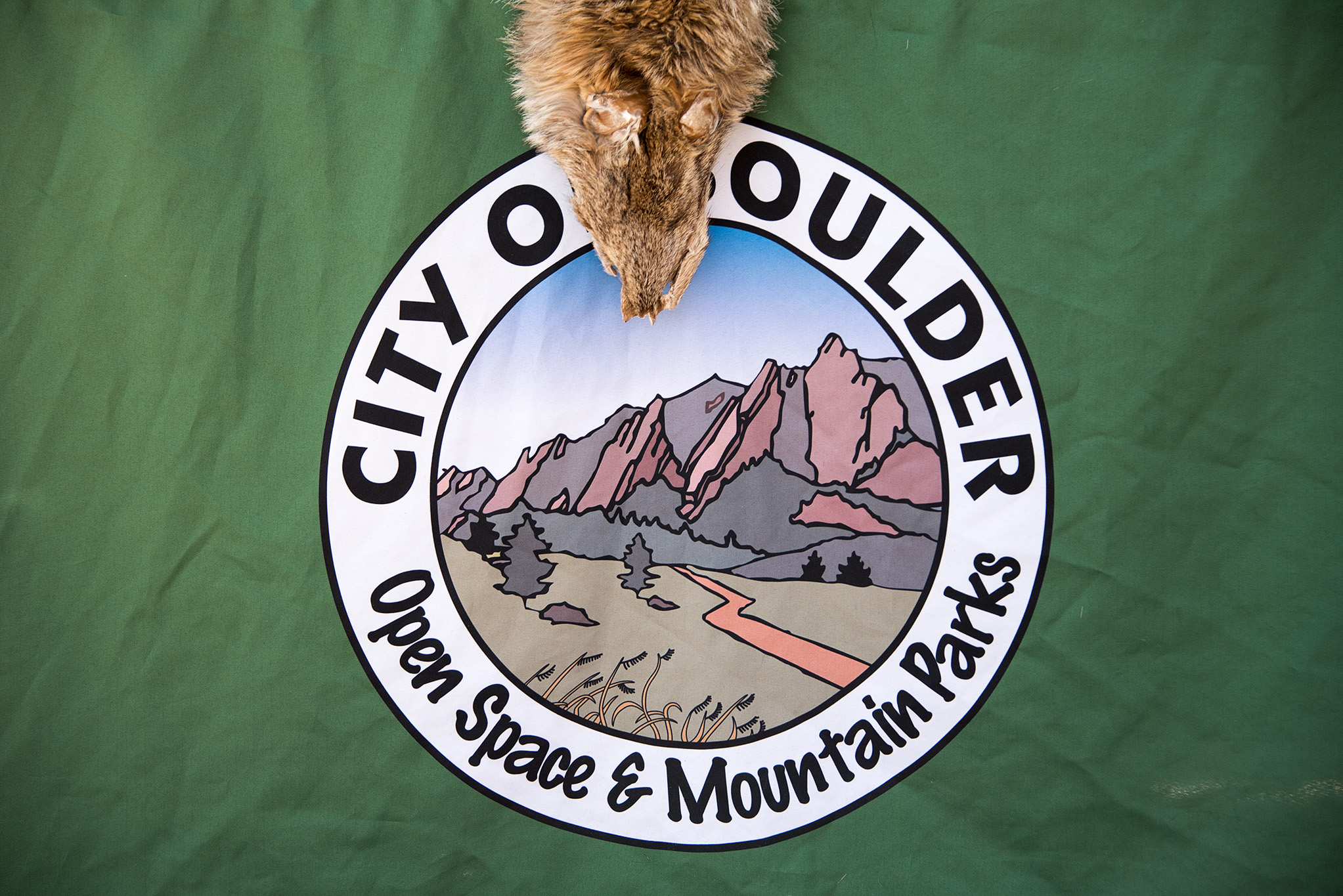 20151107 - Boulder - 043.jpg
