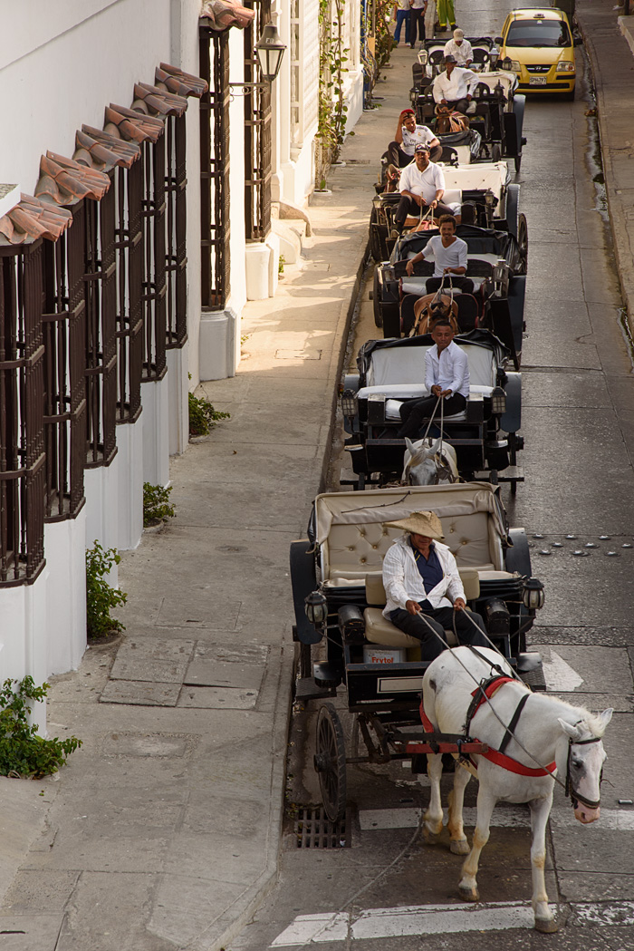 The horse drawn carriages head out to pick up tourists for tours.