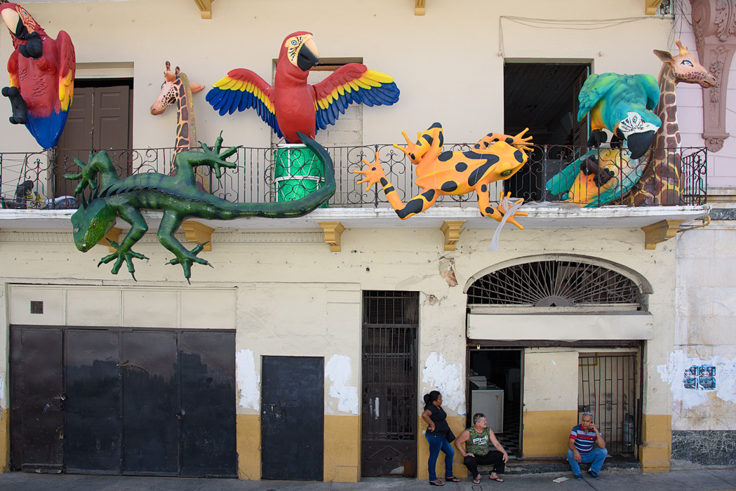 Colorful decorations remained after Carnivale