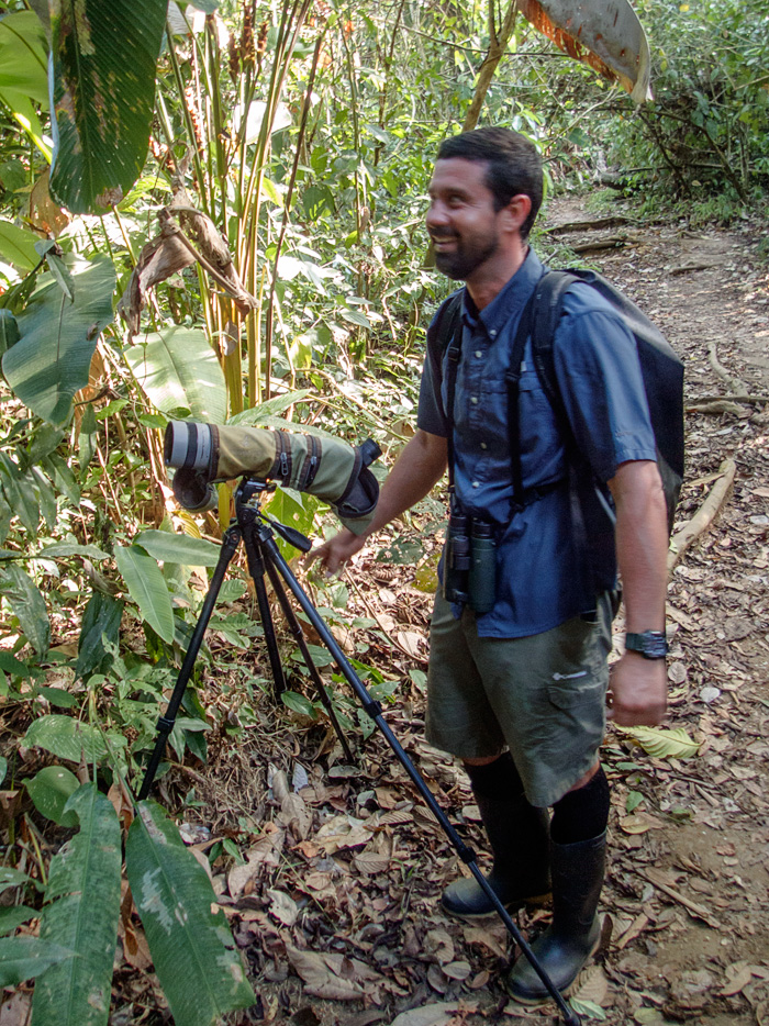 Randall helped us find all kinds of wildlife in the canopy, including crawling under the underbrush to find a sleeping Baird's tapir (Photos in our trip report)