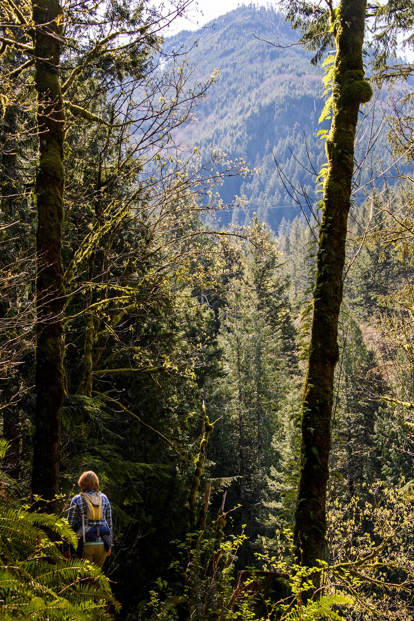 20160402 - Twin Falls Hike - 231.jpg