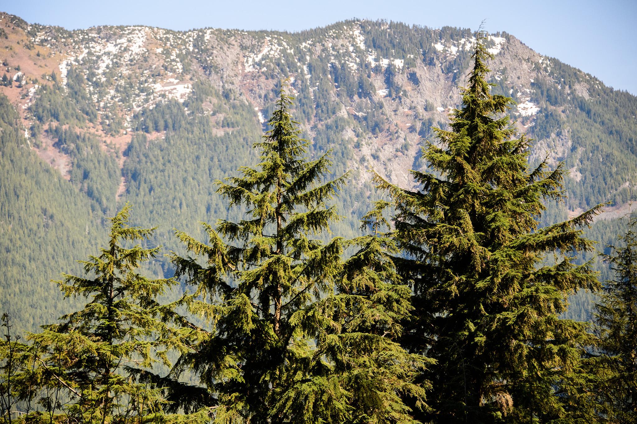 20160402 - Twin Falls Hike - 279.jpg