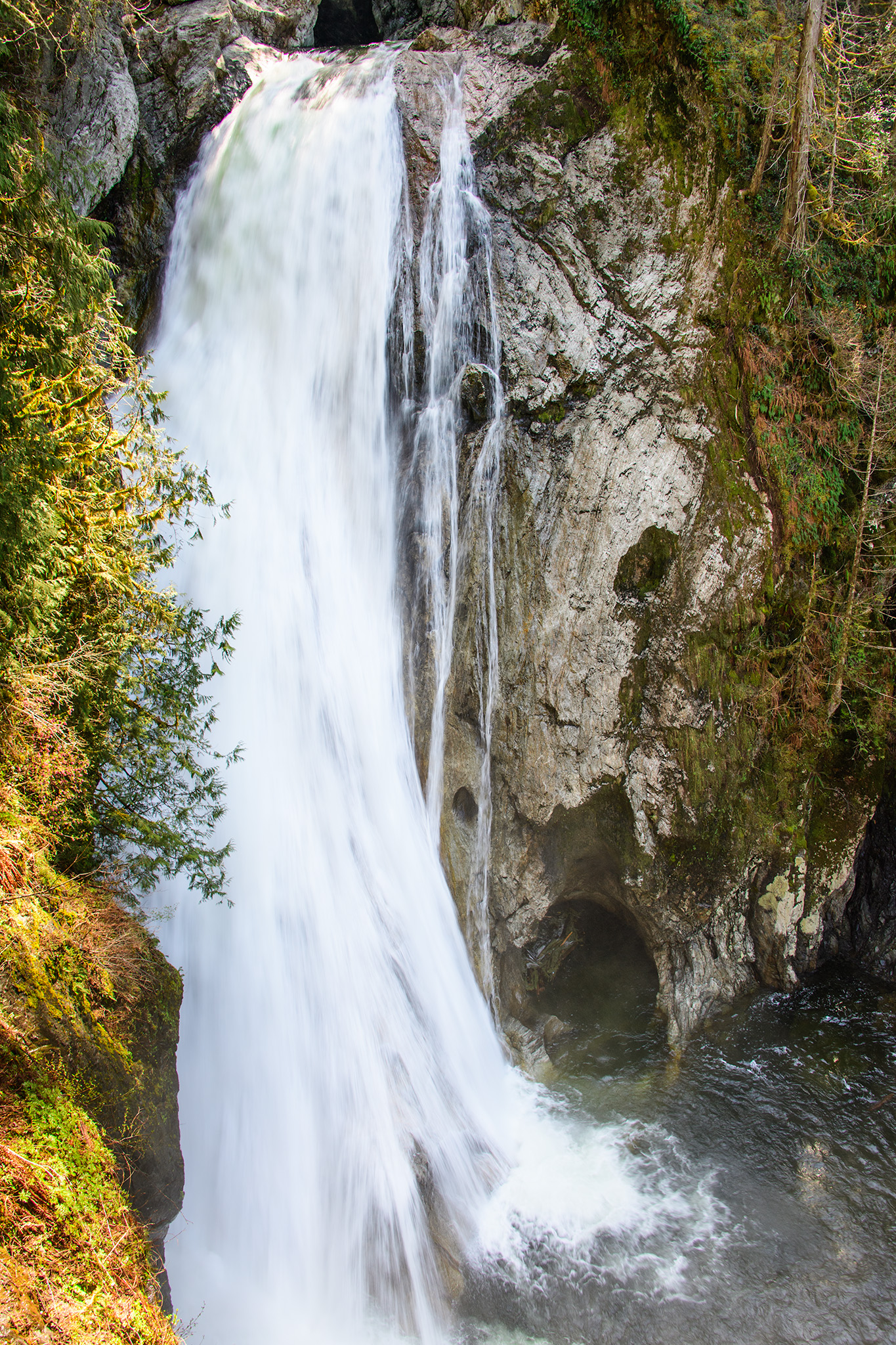One of the Twin Falls at Ollalie State Park