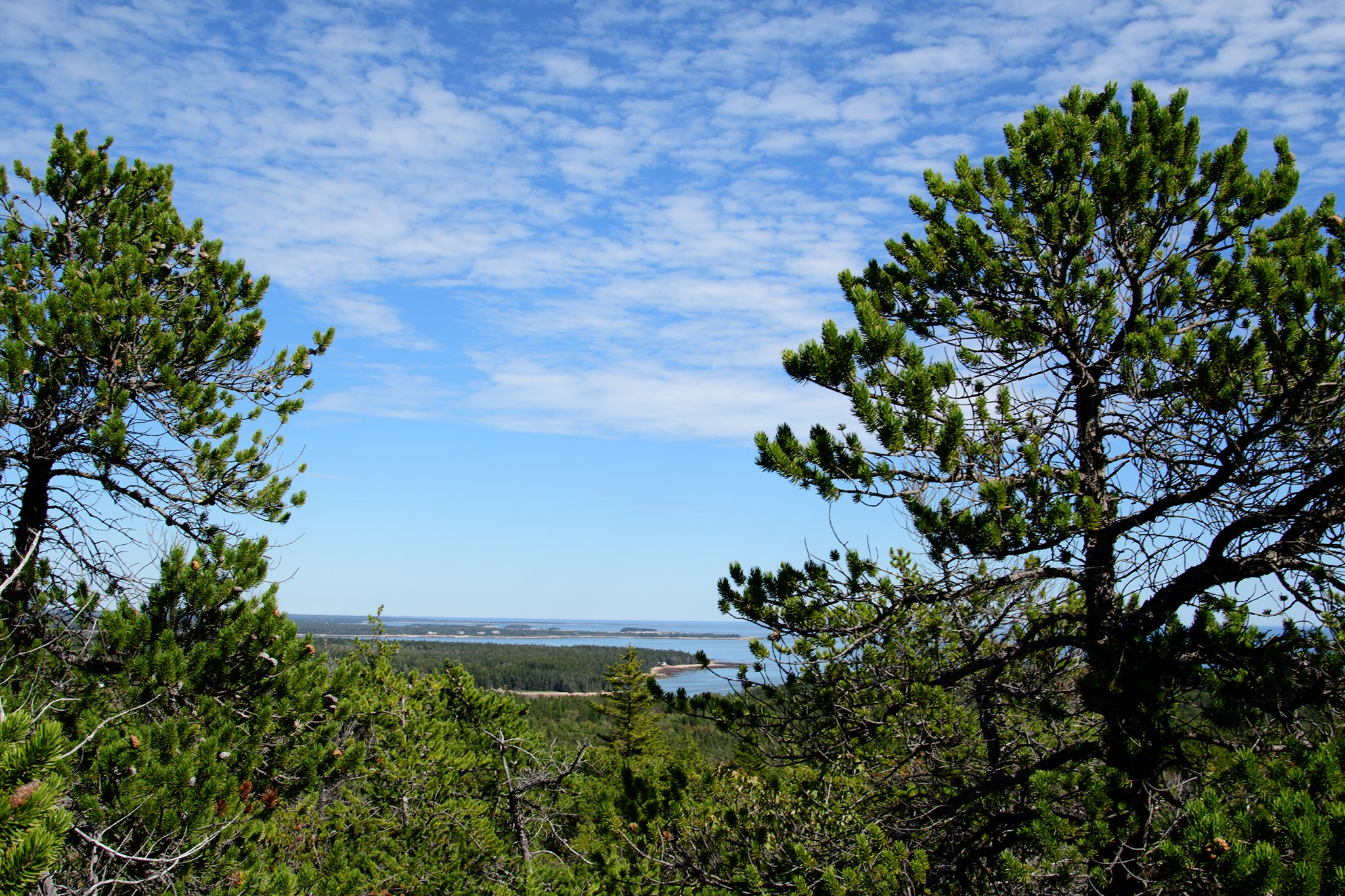A view from the trail at the top of Birch Harbor Mountain