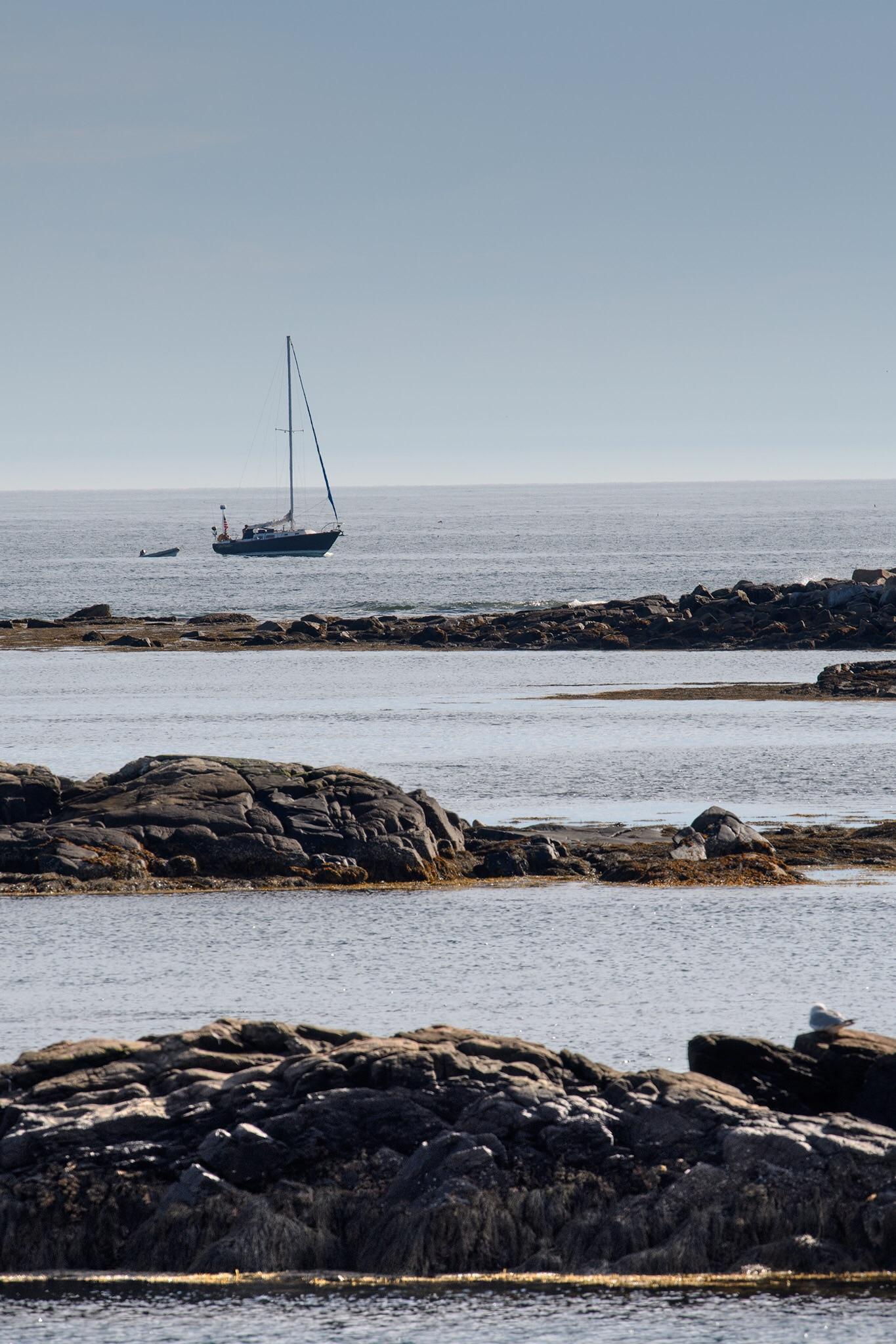 A sailboat moored in Schoodic Harbor