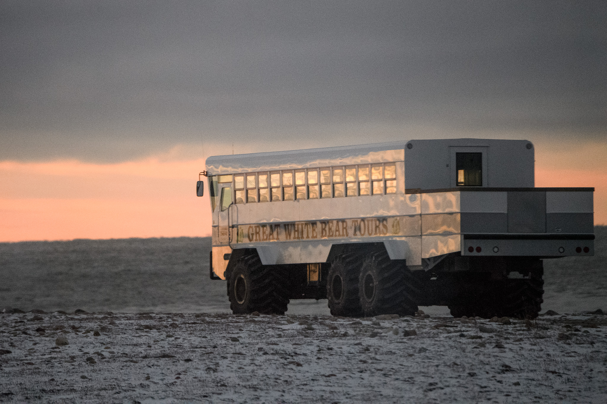 Purpose built polar rovers bring guests out into the National Park to observe bears safely, for both people and bear.