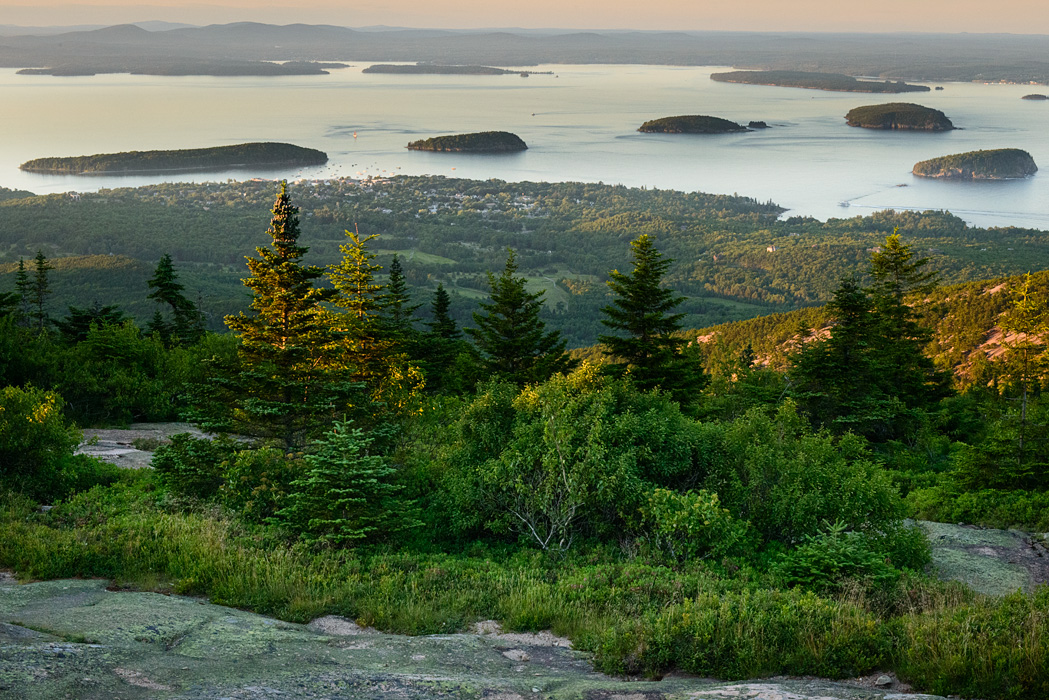 Blueberry barrens, mountain and ocean views...