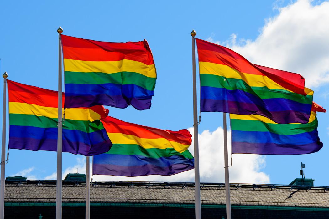 Pride flags flying for Pride Weekend