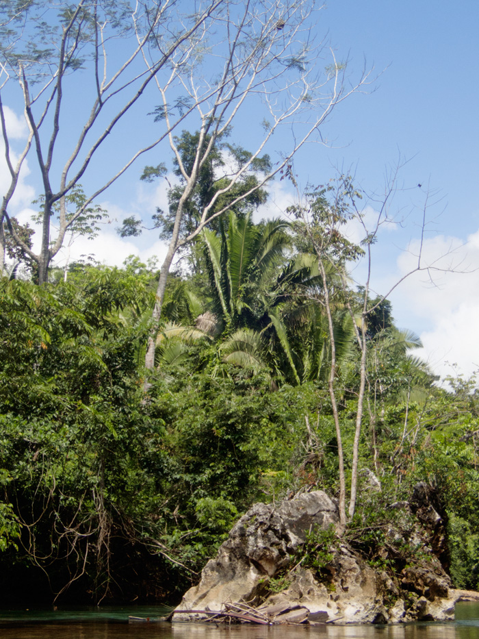 20170307 - Belize - 176.jpg