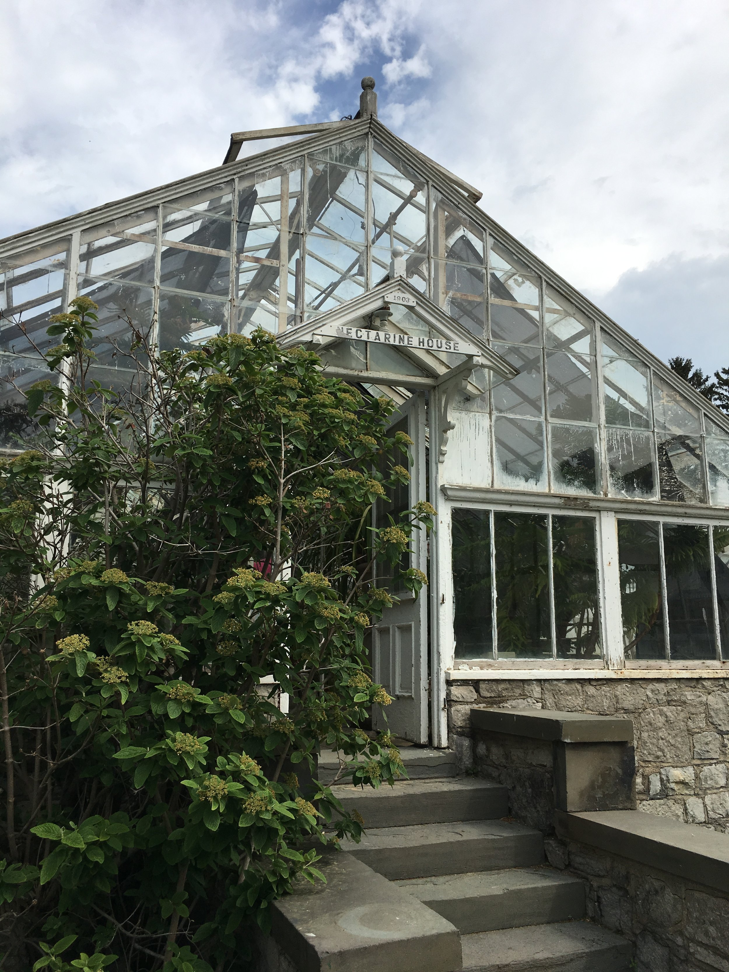 The Nectarine House with Sonnenburg Garden's collection of prizewinning orchids
