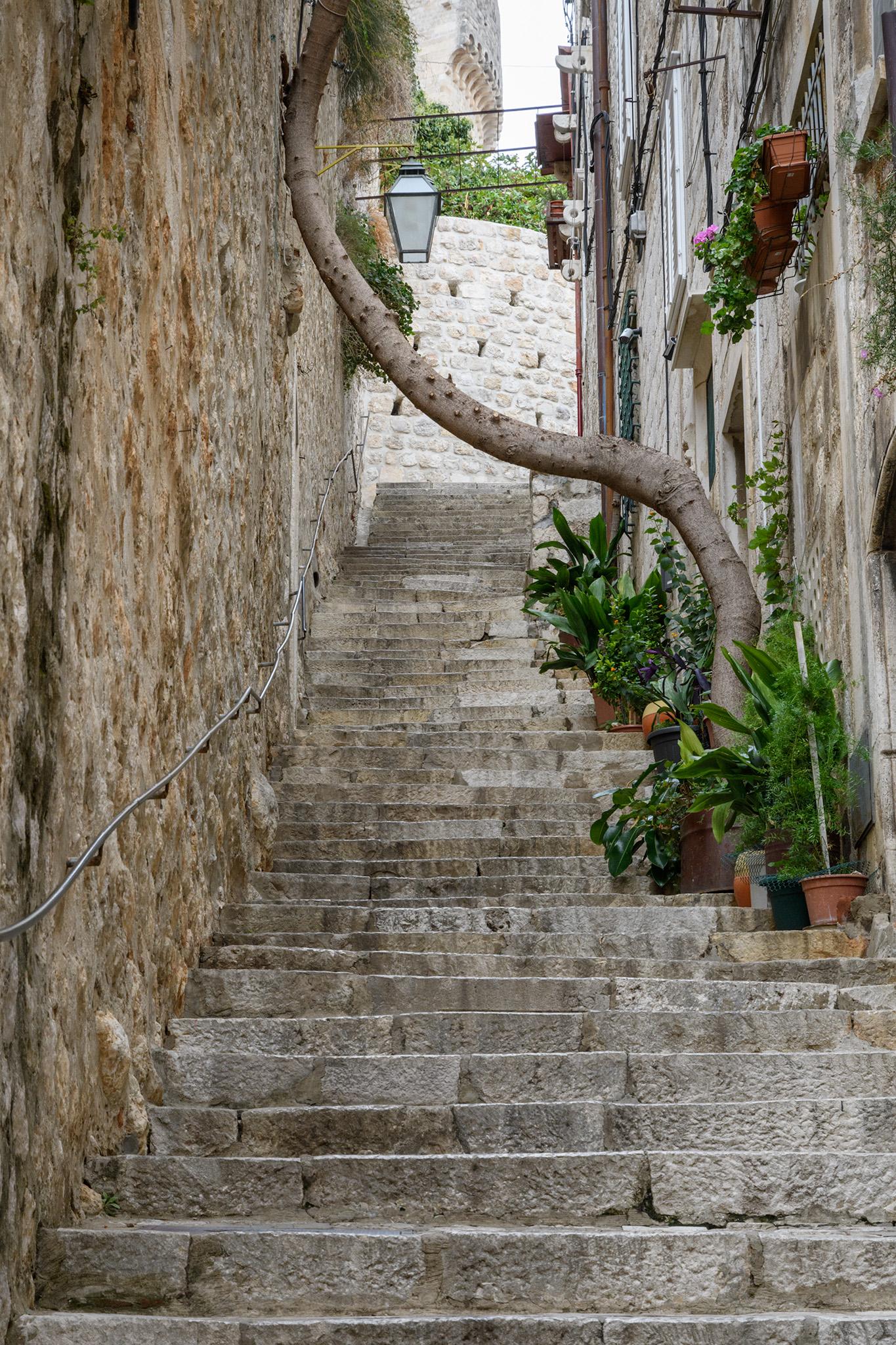 20171007 - Dubrovnik - 142.jpg
