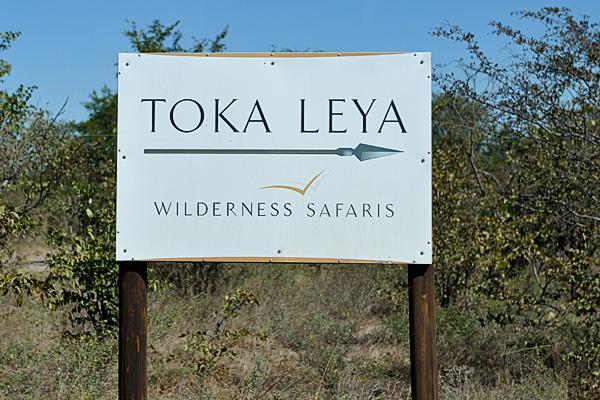 20100622 - Toka Leya (Camp) - 013.jpg