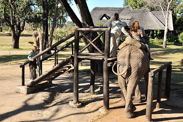 20100622 - Elephant Safari - 011.jpg