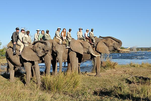 20100622 - Elephant Safari - 069.jpg