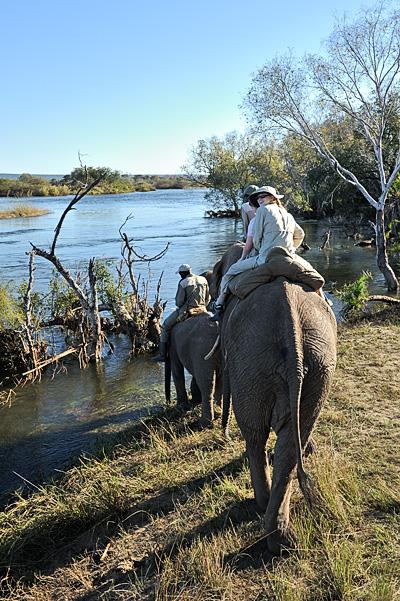 20100622 - Elephant Safari - 093.jpg