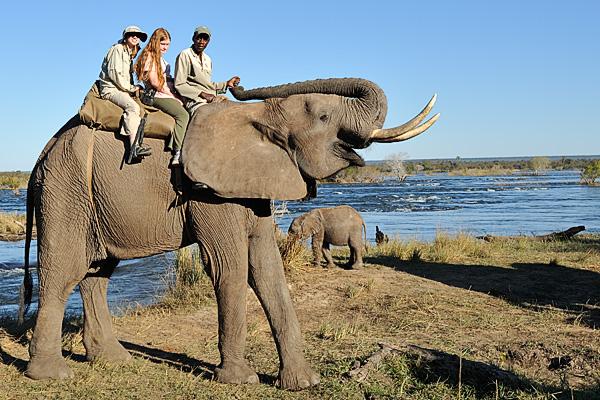 20100622 - Elephant Safari - 083.jpg