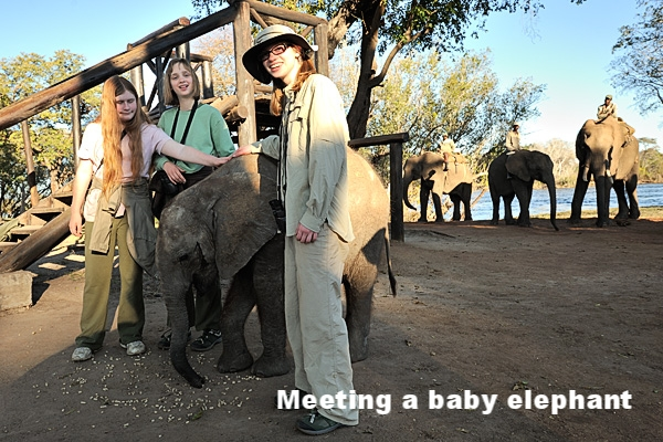 20100622 - Elephant Safari - 199.jpg