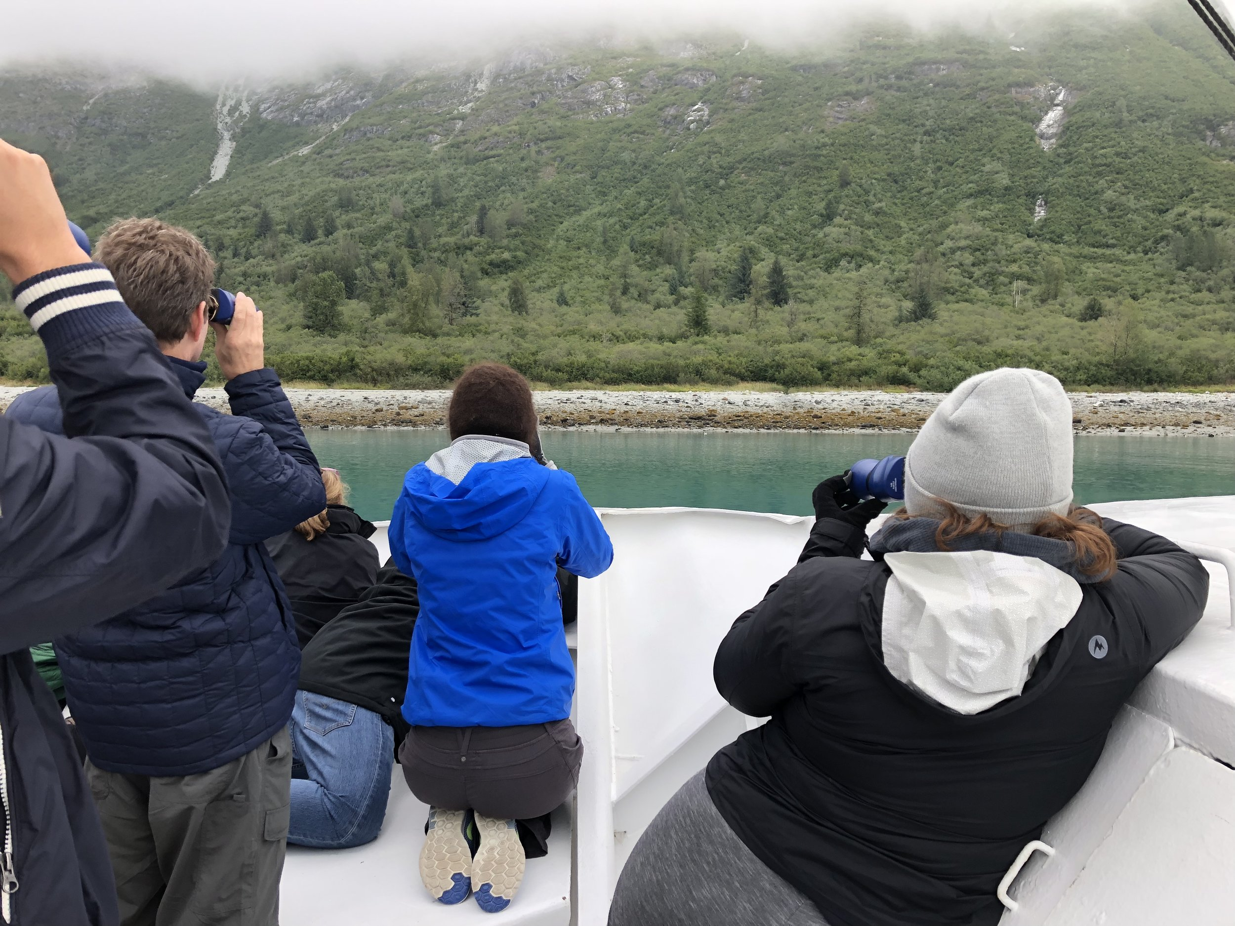 Passengers on board share space looking at bears along Russel Island In Glacier Bay NP