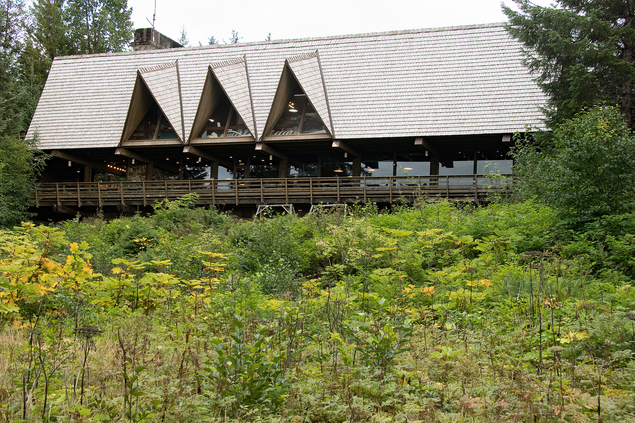 The Glacier Bay Lodge, where there is a small museum in the visitors center with displays ecological exhibits