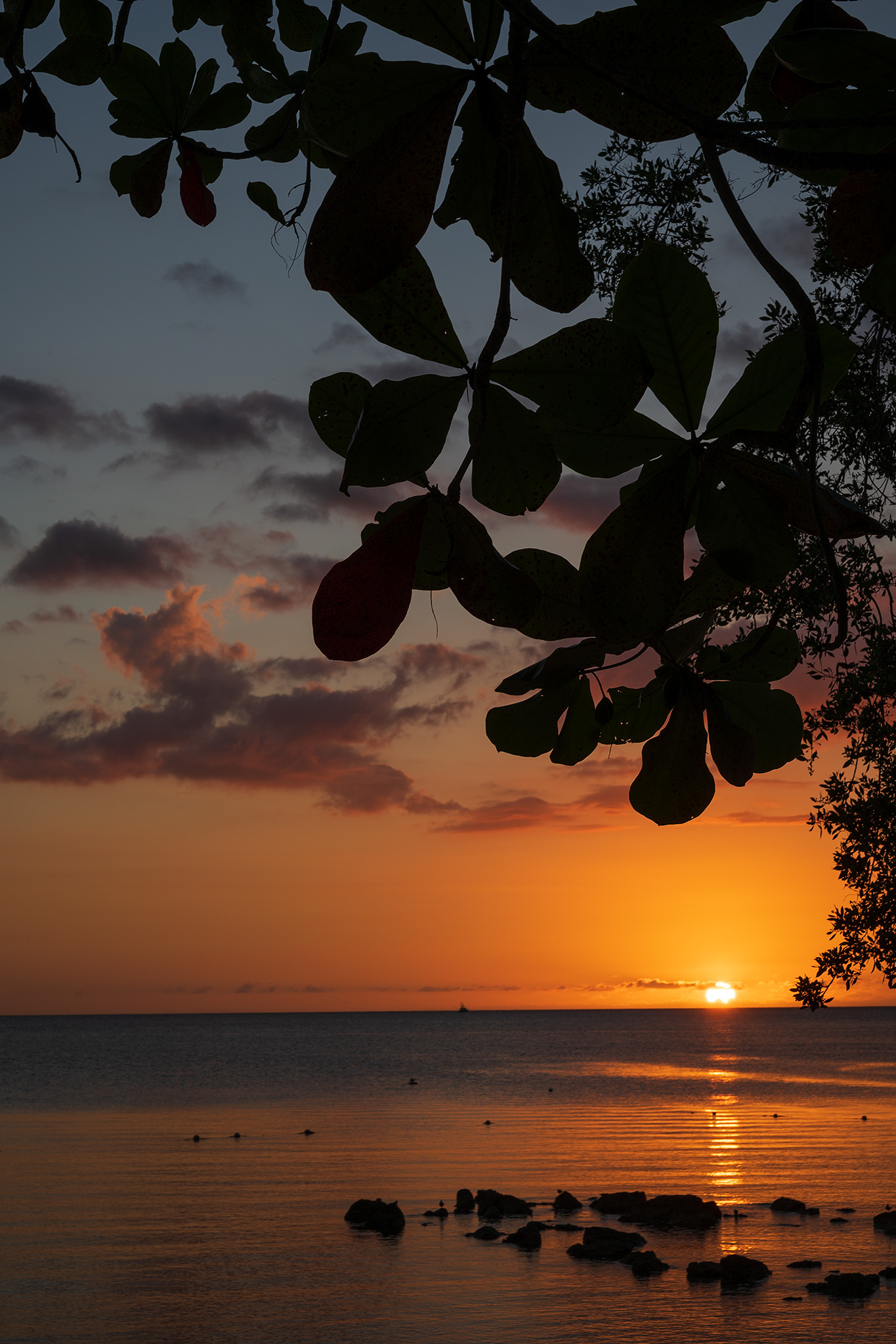 Negril 7 Mile Beach is known for it's incredible western view of the sunset.