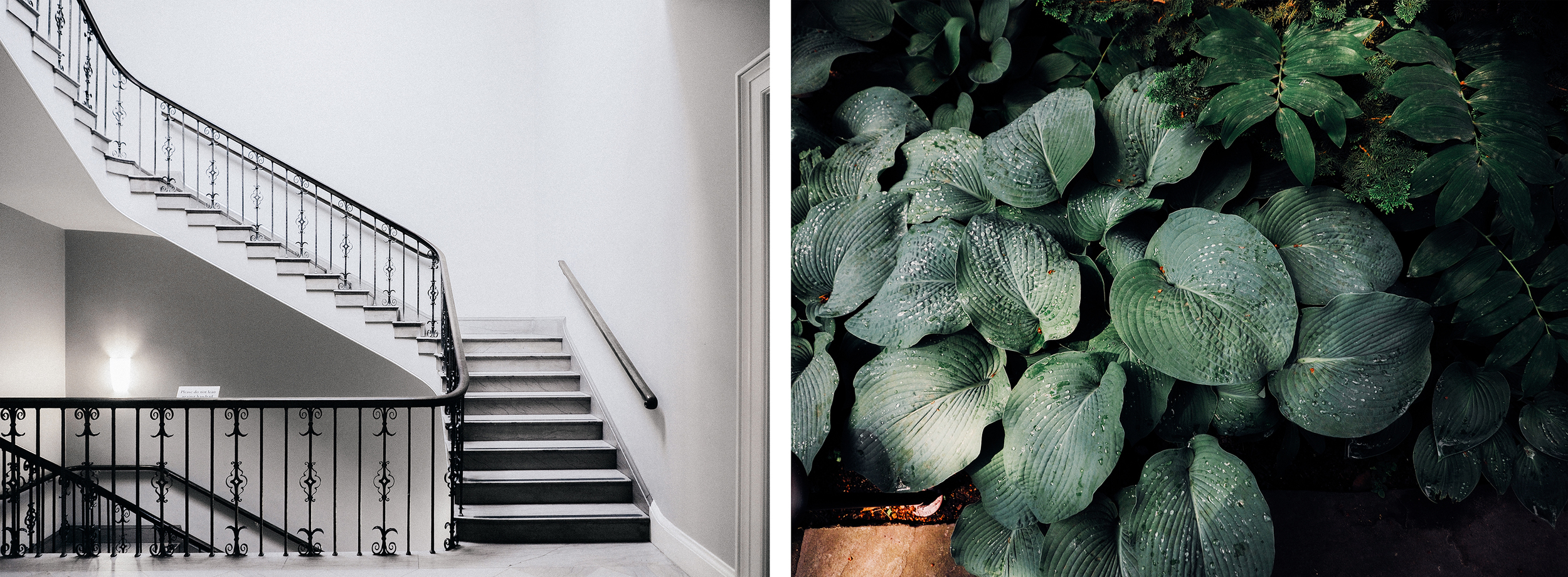 The museum had so many beautiful spaces, including stairways and their garden.