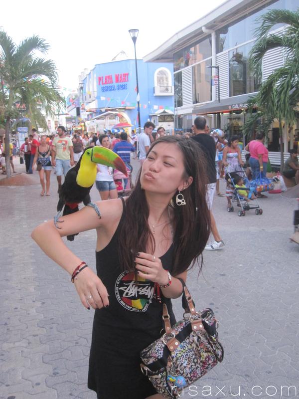 risa_xu_mexico_toucan
