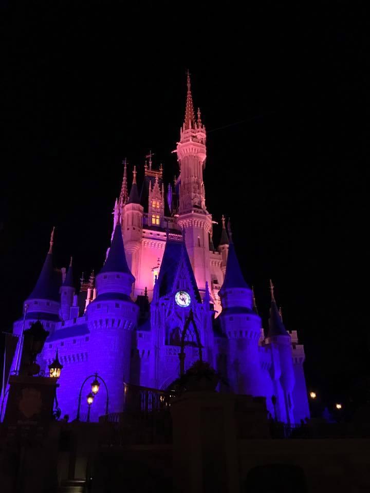 risa xu magic kingdom cinderella's castle