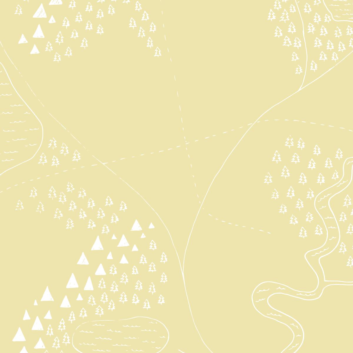 Map Patterns-03.jpg
