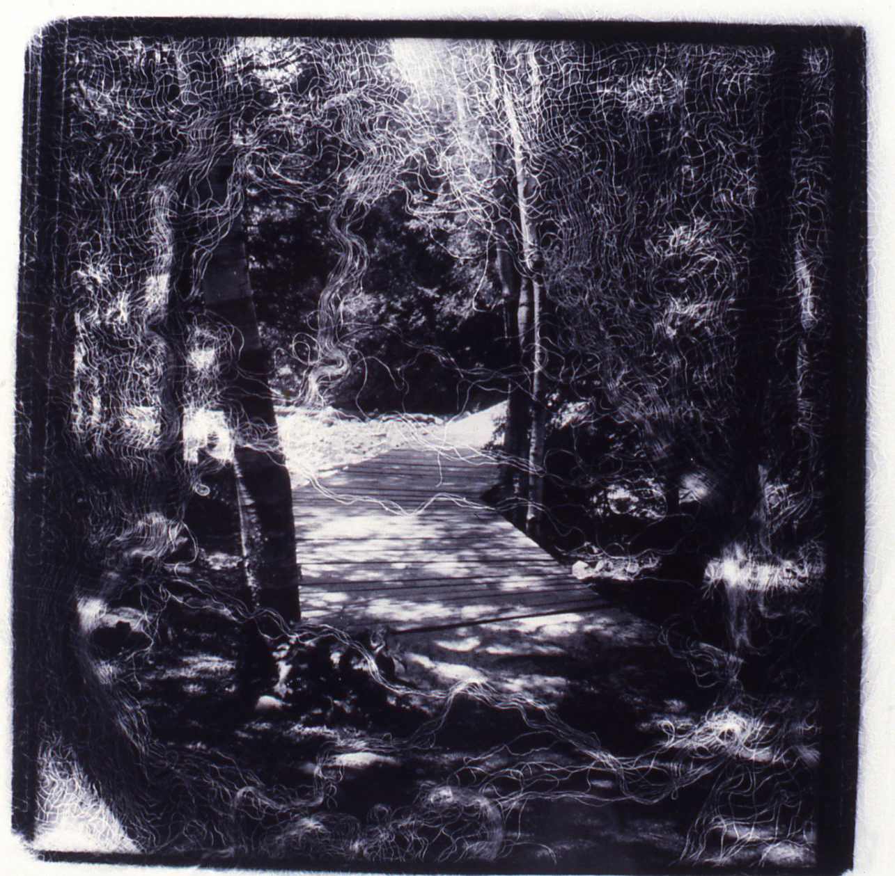 Passages Wooden Path  , Gelatin Silver print, 10x10 inches, 1989-1990, unique print