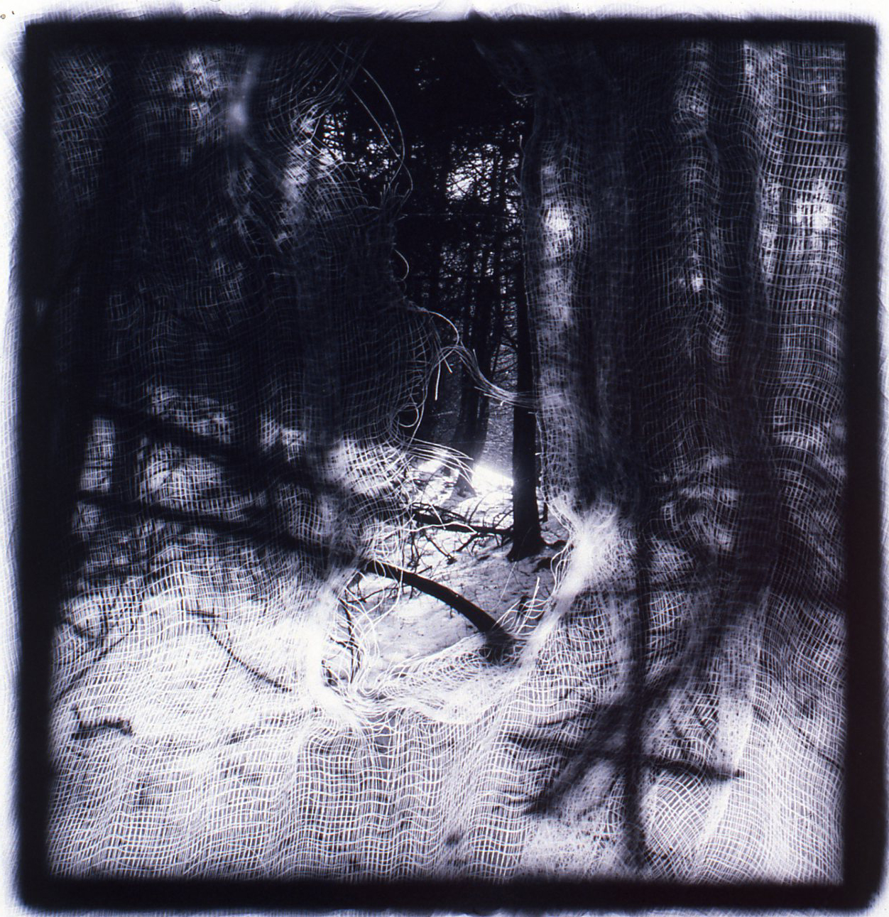 Passages Sun Rise over the Path  , Gelatin Silver print, 10x10 inches, 1989-1990, unique print