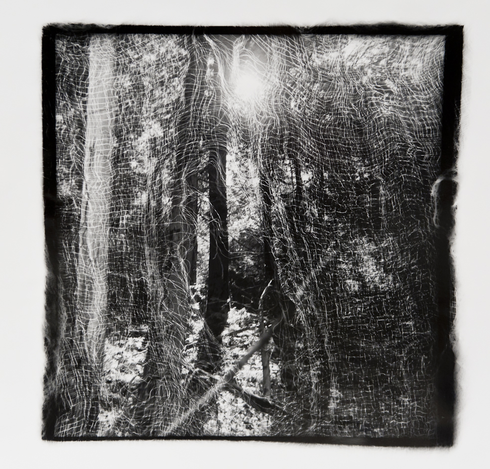 Passages Winter Sun  , Gelatin Silver print, 10x10 inches, 1989-1990, unique print