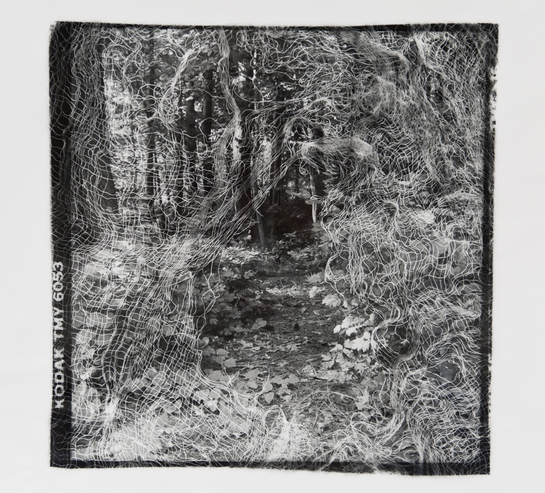 Passages Path  , Gelatin Silver print, 10x10 inches, 1989-1990, unique print