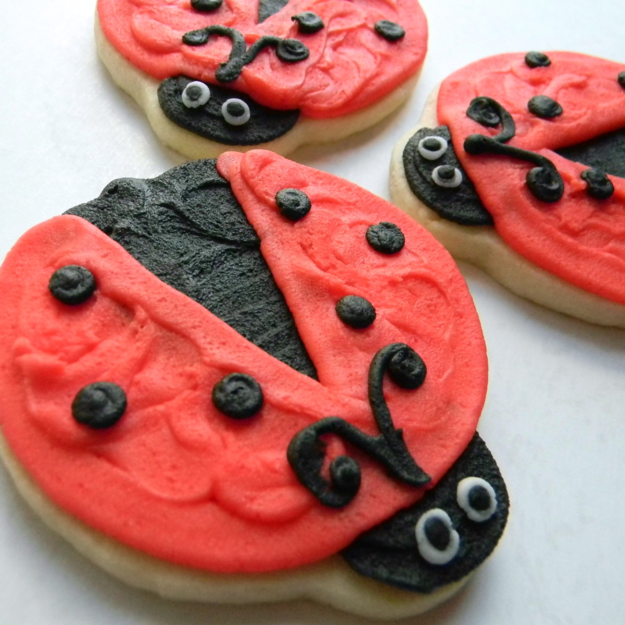 Animal.cookie.lady.bug.jpg